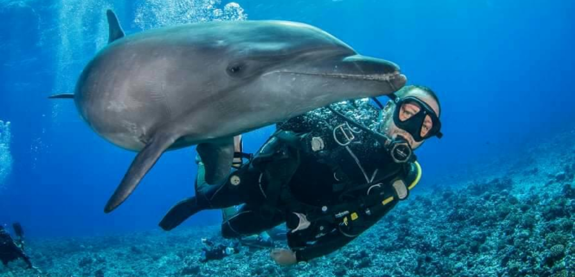 https://tahititourisme.it/wp-content/uploads/2017/08/Archimedeexpeditionsphotocouverturure_1140x550px.png