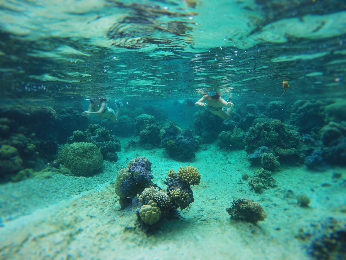 https://tahititourisme.it/wp-content/uploads/2017/08/Bora-Bora-Reef-Discovery-2.jpg