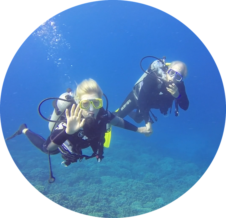 https://tahititourisme.it/wp-content/uploads/2017/08/Divers-in-the-first-try.png