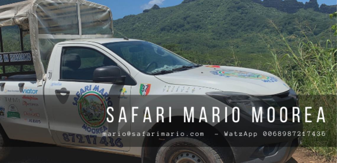 https://tahititourisme.it/wp-content/uploads/2017/08/Safari-Mario-Moorea.png