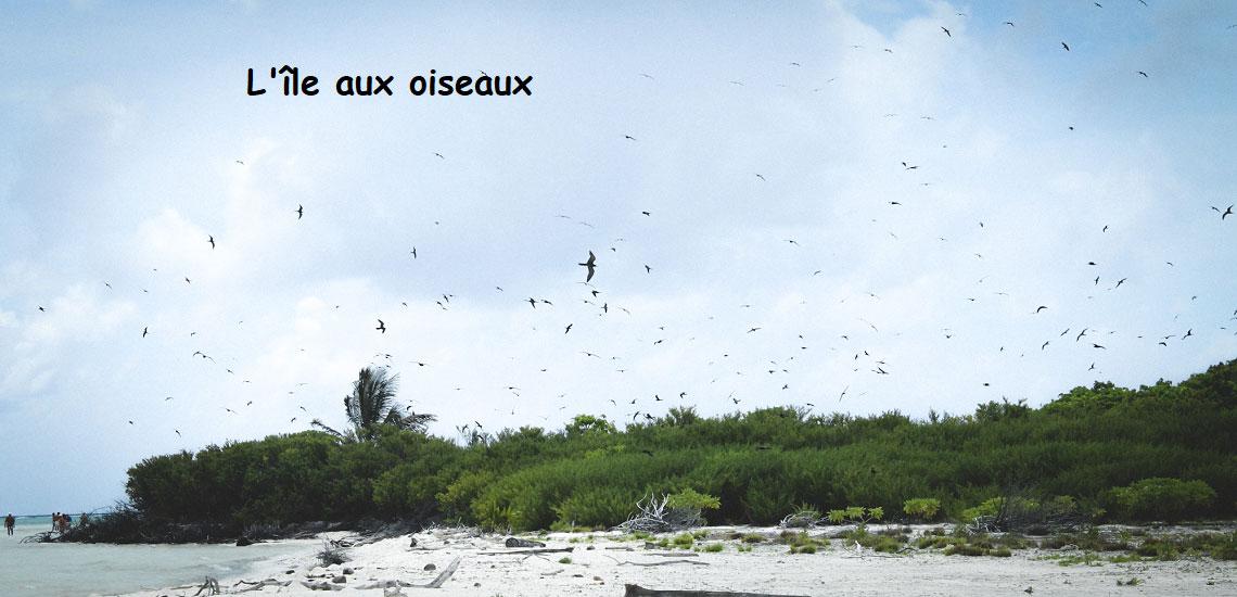 https://tahititourisme.it/wp-content/uploads/2017/08/Tahiti-Voile-et-Lagon-photo-de-couv-2.jpg