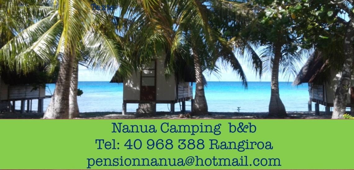 https://tahititourisme.it/wp-content/uploads/2017/08/nanuacamping_1140x550.png