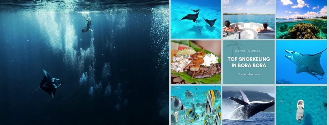 https://tahititourisme.it/wp-content/uploads/2017/08/reef-discovery-bora-bora.jpg