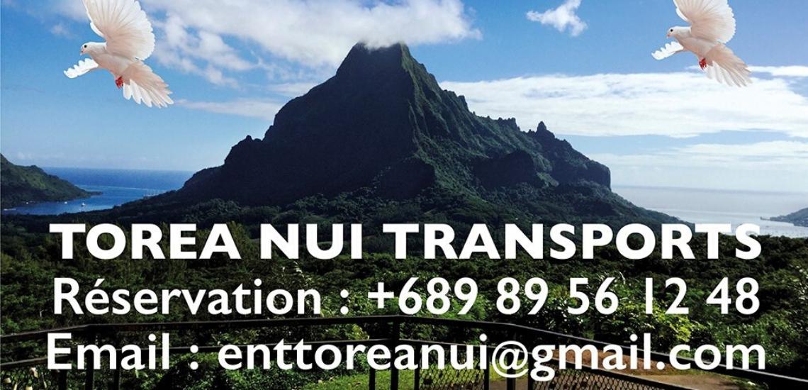 https://tahititourisme.it/wp-content/uploads/2017/08/torea-nui-transports_1140x550.png
