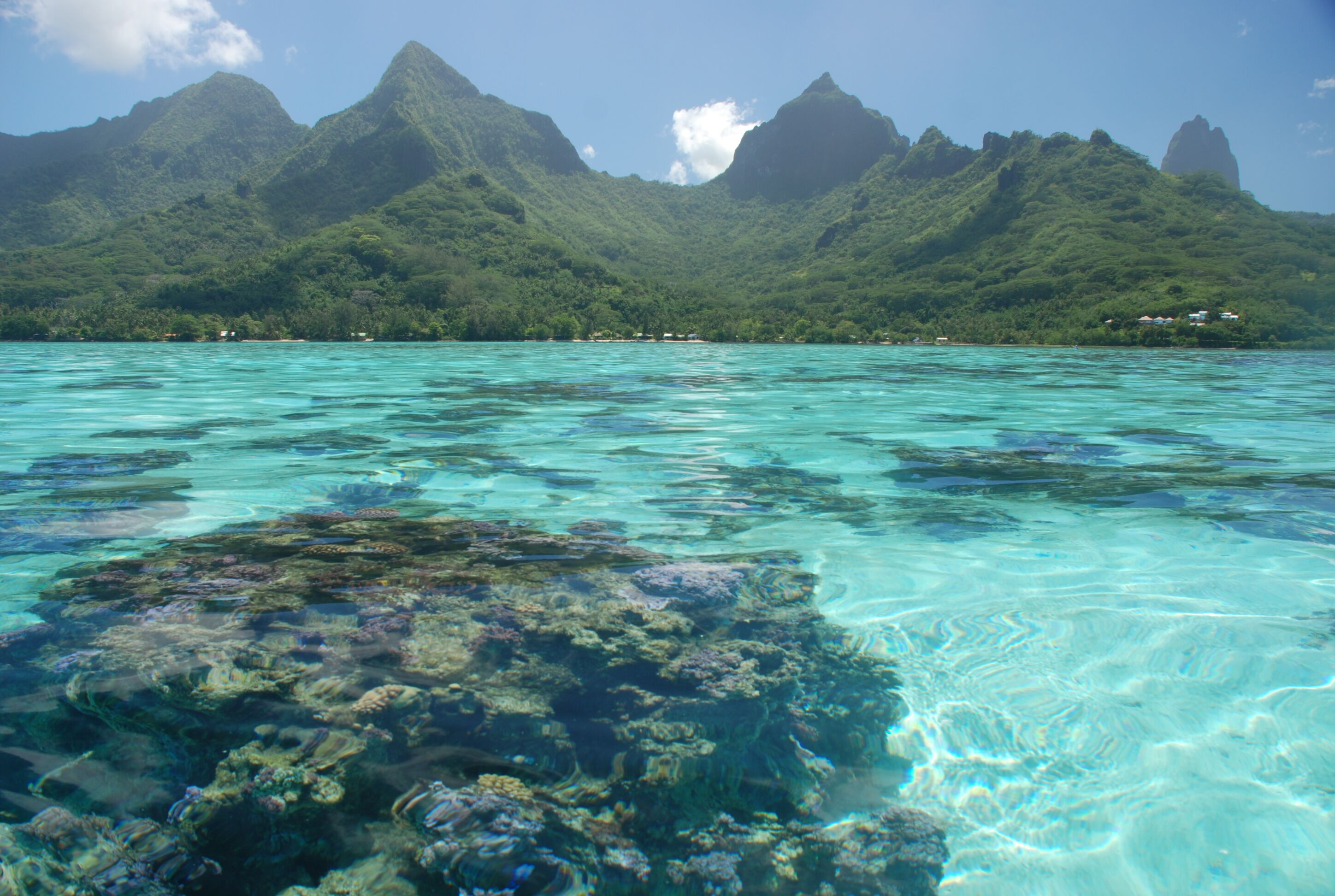 https://tahititourisme.it/wp-content/uploads/2018/04/moorea-1.jpeg