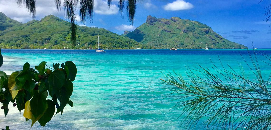 https://tahititourisme.it/wp-content/uploads/2018/05/ACTIVITES-TERRESTRES-Green-Tours-Huahine-1.jpg