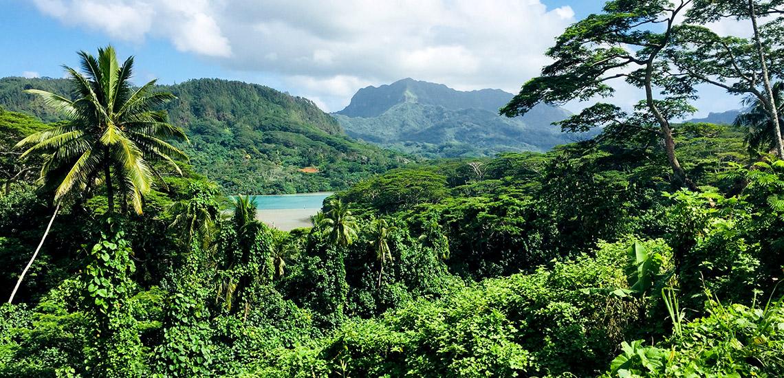 https://tahititourisme.it/wp-content/uploads/2018/05/ACTIVITES-TERRESTRES-Green-Tours-Huahine-2.jpg