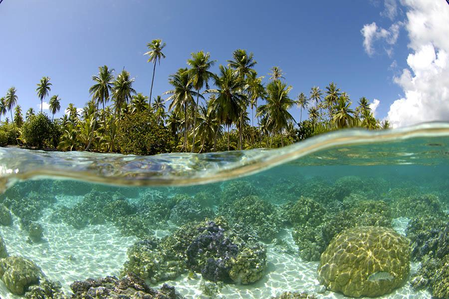 https://tahititourisme.it/wp-content/uploads/2019/01/Luxury-Holiday-to-Bora-Bora-Tahaa-Business-Class.jpg