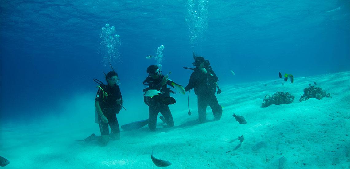 https://tahititourisme.it/wp-content/uploads/2019/04/Tahiti-Nui-Diving-1140x550.jpg