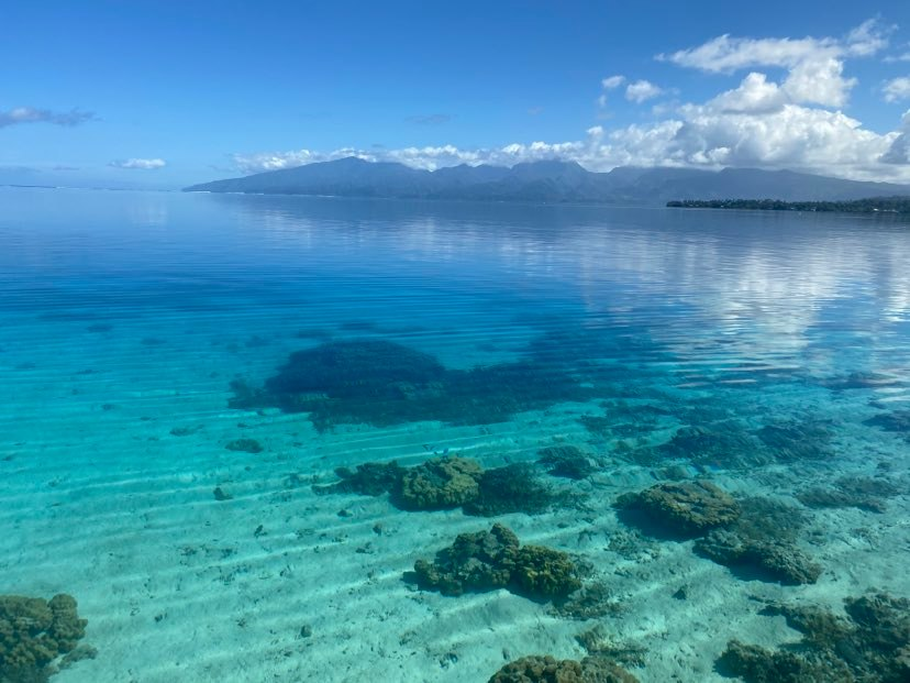 https://tahititourisme.it/wp-content/uploads/2020/09/118979505_675979593016638_5256249963124799046_n.jpg