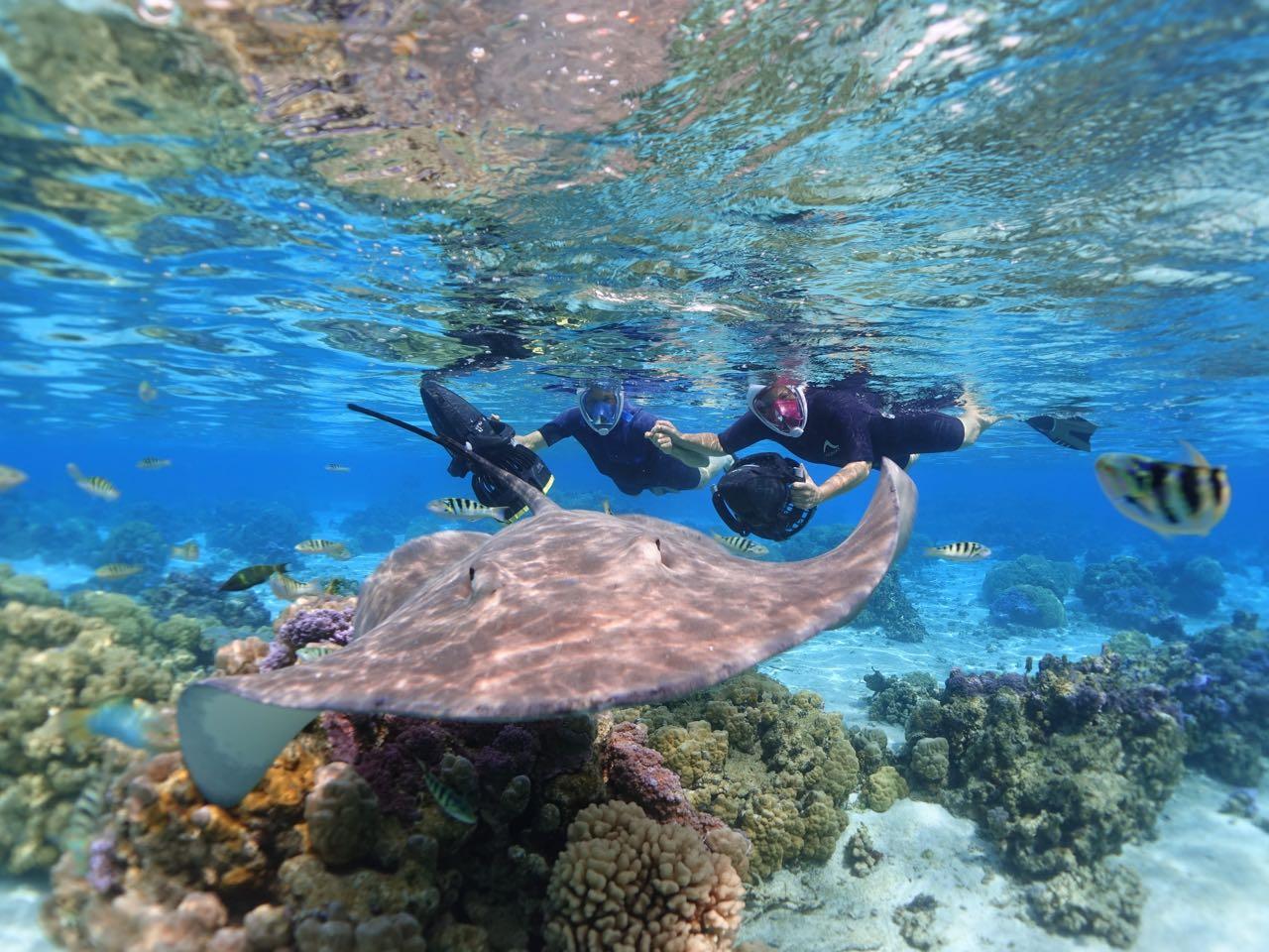 https://tahititourisme.it/wp-content/uploads/2020/09/Sea-Scooter-Snorkeling-Tour-à-moorea-copie-2.jpg