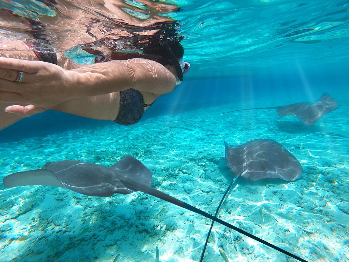 https://tahititourisme.it/wp-content/uploads/2020/11/Lagoon-Srvice-Bora-Bora-2.jpg