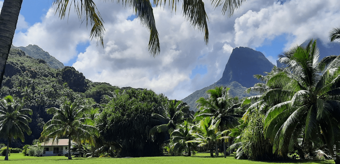 https://tahititourisme.it/wp-content/uploads/2021/05/residenceapaura_1140x550-1-min.png